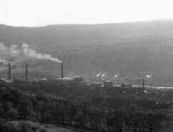 View of the Phurnacite Plant from the 'Coal Tip' above Rose row at Cwmbach